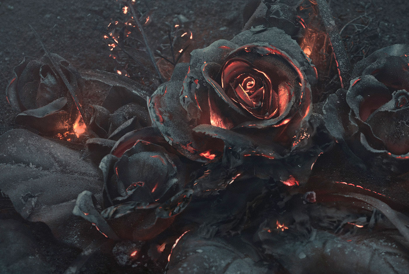 When Ashes & Roses Collide— This Valentine's Day, Love Bigger